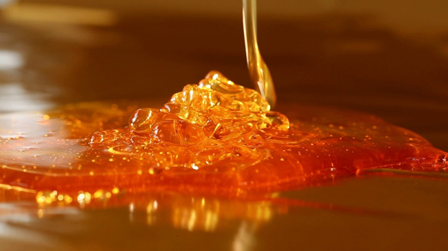 Photo of honey from Shutterstock