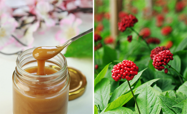 Photo of Manuka honey from Shutterstock
